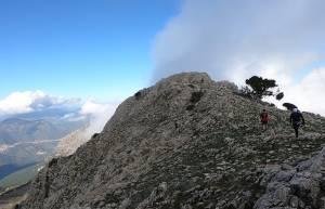 Artemisio Mountain Running, ένας skyrunning προσομοιωτής - Τα αποτελέσματα των αγώνων