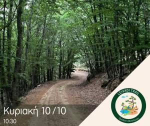 Ολες οι λεπτομέρειες του 1ου Leivadi Trail !