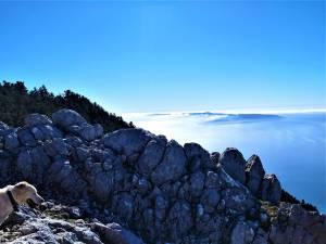 Ainos Marathon: Μια νέα αγωνιστική πρόκληση στο επιβλητικό βουνό της Κεφαλονιάς!